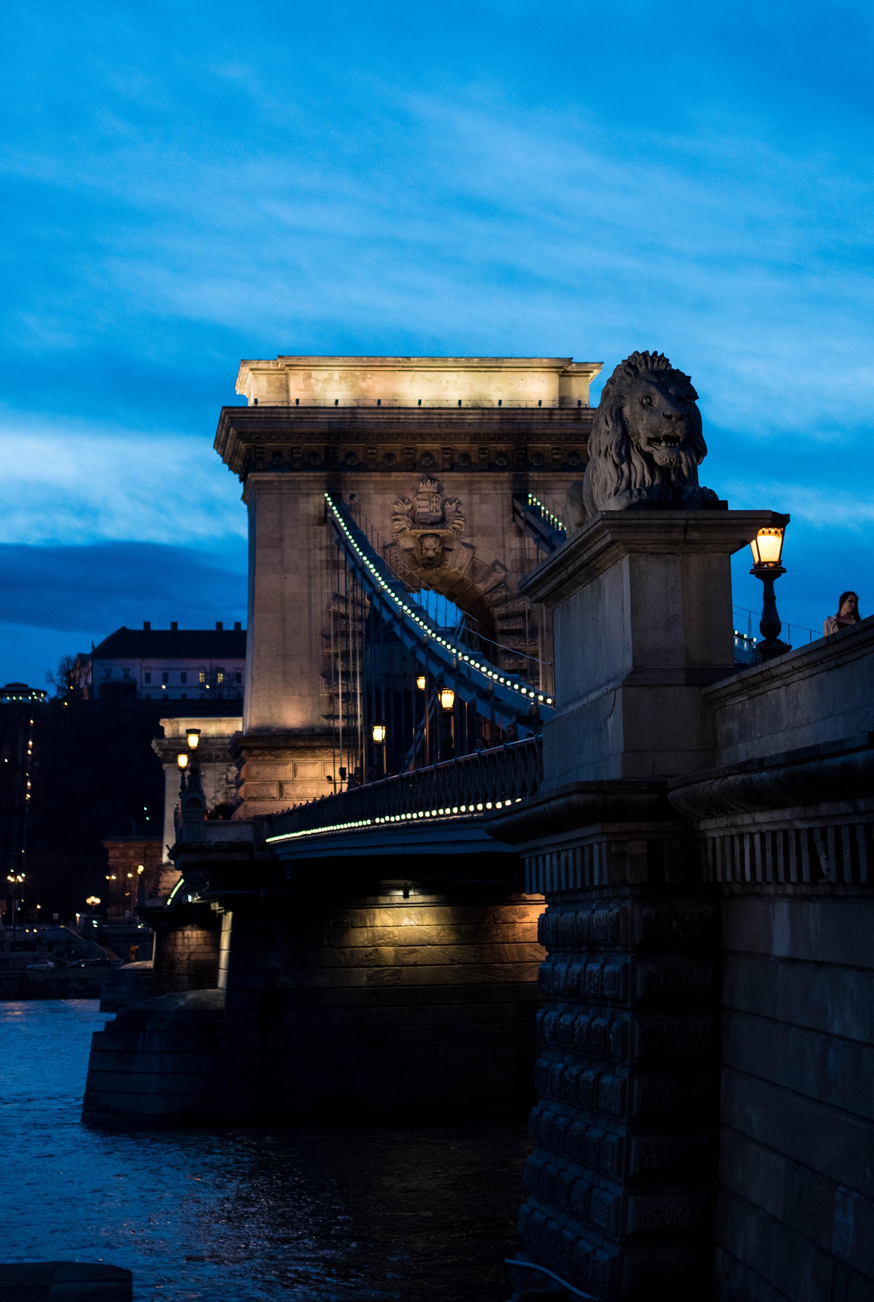 budapest-bridge-by-kaia-dalbora