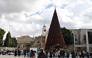 Christmas tree in Bethlehem
