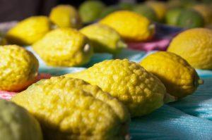 Yellow etrog fruit