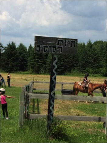 Hebrew sign for Chavat Hasusim (Horse Farm) at Olin Sang Ruby Union Institute (Union for Reform Judaism camp in Wisconsin). Photo by Sarah Benor.