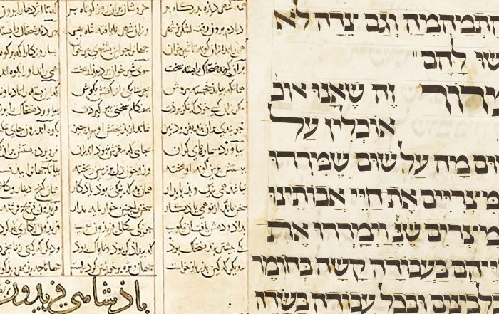 Two lightly illuminated pages from the historic books, written in calligraphy