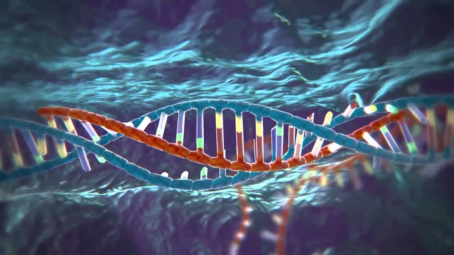 A dramatic image shows a DNA double helix against a dark background full of waves drawn from microscopic photography