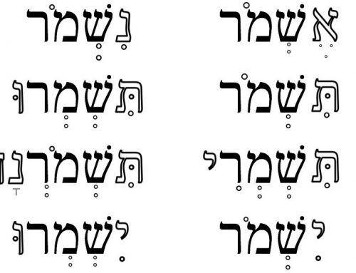 The joy of Hebrew grammar