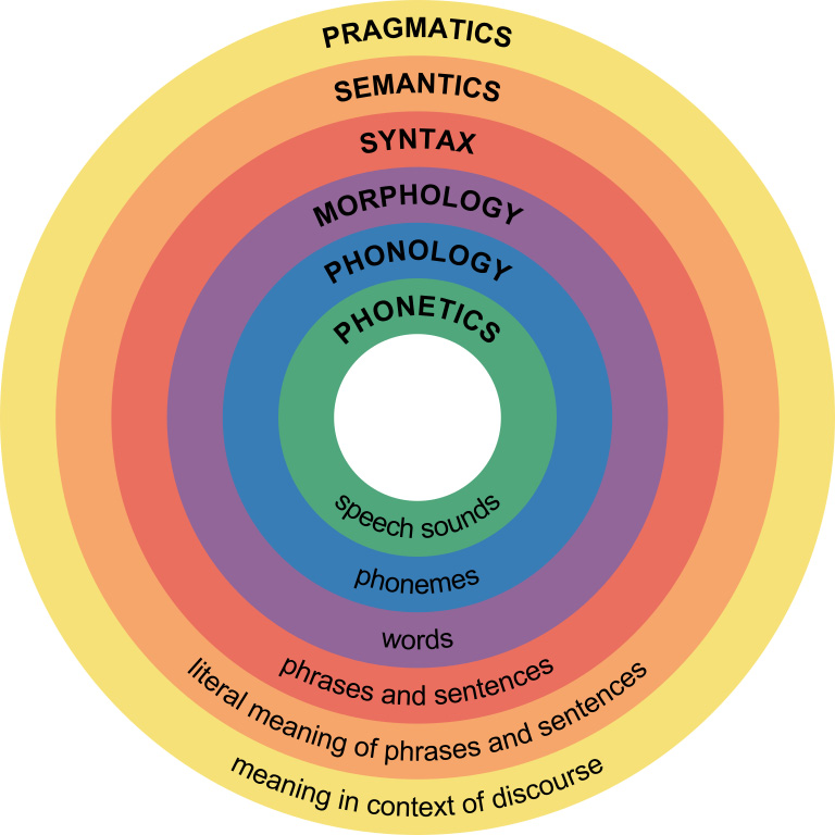 "Diagram showing concentric circles representing levels of linguistic structures: from the outer ring to the inner, ""pragmatics/meaning in the context of discourse,"" ""semantics/literal meaning of words and phrases,"" ""syntax/phrases and sentences,"" ""morphology/words,"" ""phonology/phonemes,"" and ""phonetics/speech sounds"""