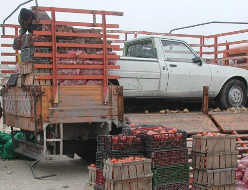 The good goods: Smuggling between Israel and the Palestinian Territories