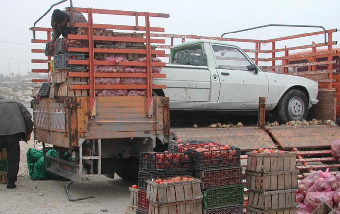 A white truck sitting in an open trailer, with stacked crates of apples on the side